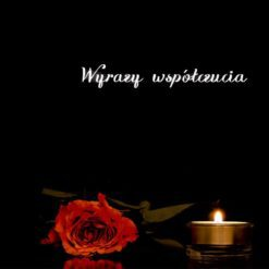 Misiu (Polish) - Sympathy